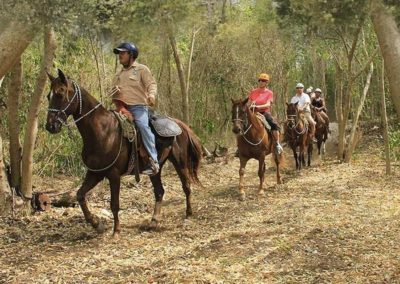 horse-back-riding-riviera-maya