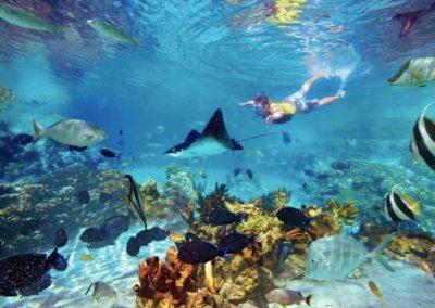 snorkel-guy-puerto-morelos