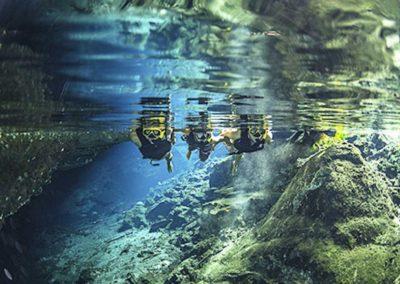 swimming-jungla-maya